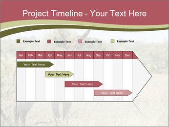 0000087597 PowerPoint Template - Slide 25