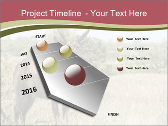 Waterbuck PowerPoint Template - Slide 26