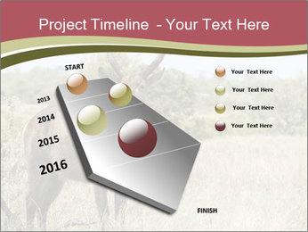 Waterbuck PowerPoint Templates - Slide 26