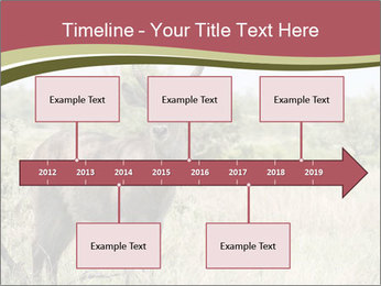 Waterbuck PowerPoint Template - Slide 28