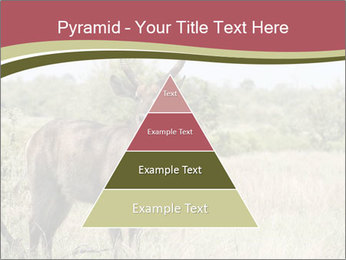 Waterbuck PowerPoint Template - Slide 30
