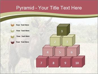 0000087597 PowerPoint Template - Slide 31