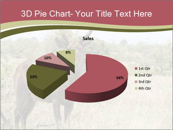 Waterbuck PowerPoint Template - Slide 35