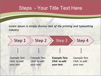 Waterbuck PowerPoint Template - Slide 4