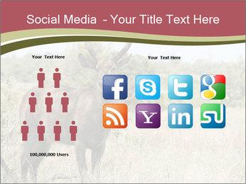 Waterbuck PowerPoint Templates - Slide 5