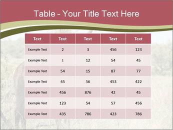 Waterbuck PowerPoint Templates - Slide 55