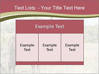 Waterbuck PowerPoint Templates - Slide 59