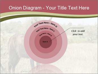 Waterbuck PowerPoint Templates - Slide 61