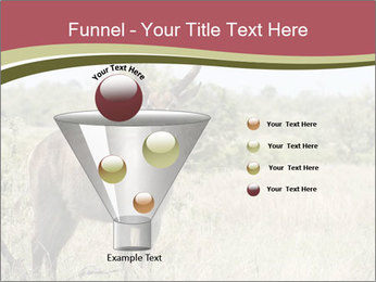 Waterbuck PowerPoint Template - Slide 63