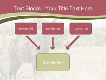 Waterbuck PowerPoint Templates - Slide 70