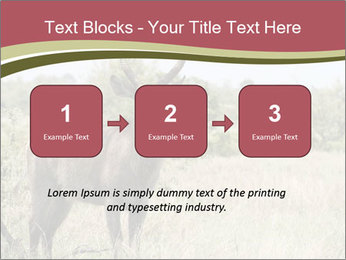 Waterbuck PowerPoint Template - Slide 71