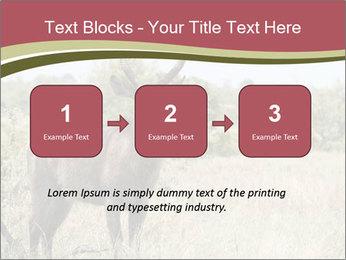 0000087597 PowerPoint Template - Slide 71
