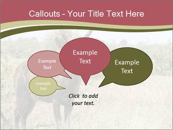 0000087597 PowerPoint Template - Slide 73