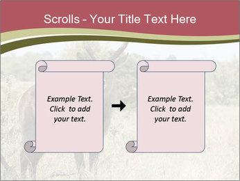 Waterbuck PowerPoint Templates - Slide 74