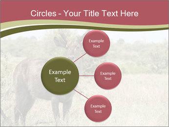 Waterbuck PowerPoint Templates - Slide 79