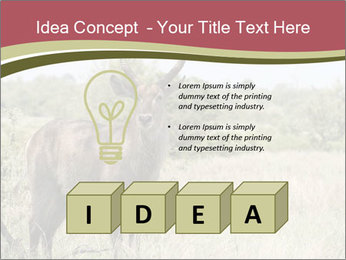 Waterbuck PowerPoint Template - Slide 80