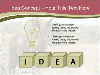 0000087597 PowerPoint Template - Slide 80
