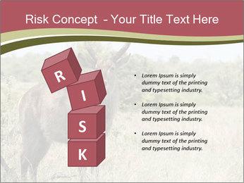 Waterbuck PowerPoint Templates - Slide 81
