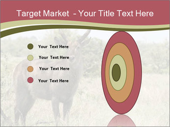 Waterbuck PowerPoint Template - Slide 84