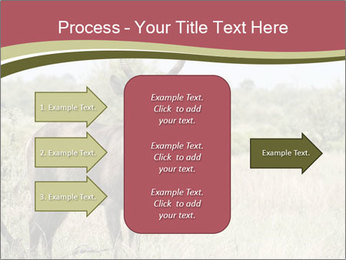 Waterbuck PowerPoint Templates - Slide 85