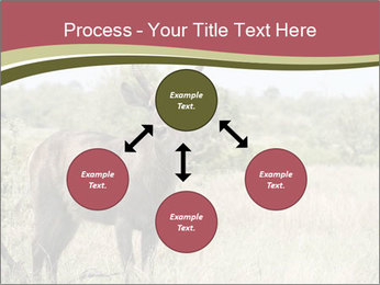0000087597 PowerPoint Template - Slide 91
