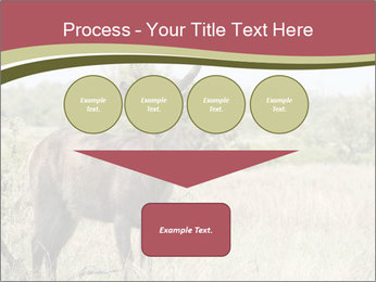 Waterbuck PowerPoint Template - Slide 93
