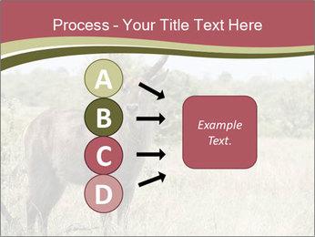 0000087597 PowerPoint Template - Slide 94