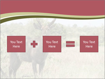Waterbuck PowerPoint Template - Slide 95