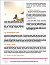 0000087609 Word Template - Page 4