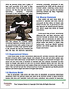 0000087610 Word Templates - Page 4