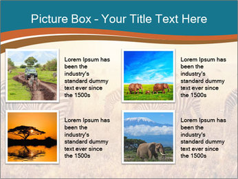 0000087612 PowerPoint Template - Slide 14