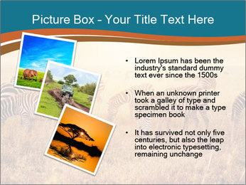 0000087612 PowerPoint Template - Slide 17