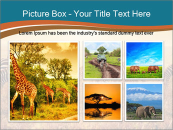 0000087612 PowerPoint Template - Slide 19