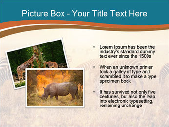 0000087612 PowerPoint Template - Slide 20