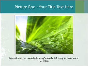 0000087616 PowerPoint Template - Slide 15