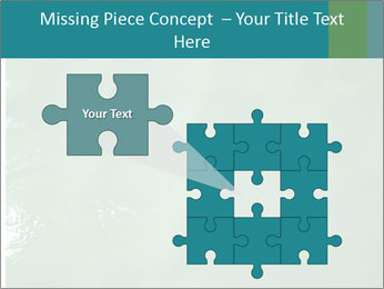 0000087616 PowerPoint Template - Slide 45