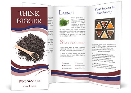 0000087621 Brochure Template