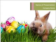Easter bunny PowerPoint Templates