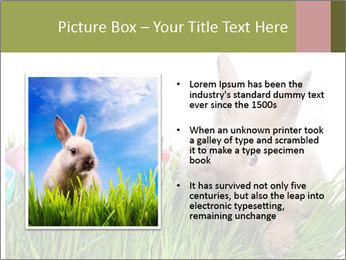 0000087622 PowerPoint Template - Slide 13