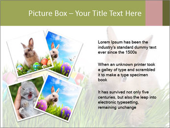 0000087622 PowerPoint Template - Slide 23