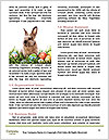 0000087622 Word Templates - Page 4