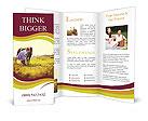 0000087629 Brochure Template