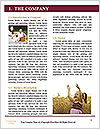 0000087629 Word Template - Page 3