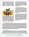 0000087639 Word Templates - Page 4