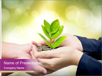 Palms PowerPoint Template - Slide 1