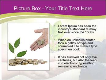Palms PowerPoint Template - Slide 13