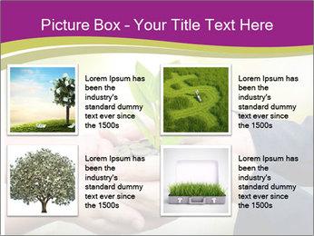 Palms PowerPoint Template - Slide 14