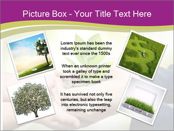 Palms PowerPoint Template - Slide 24