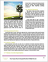 0000087645 Word Templates - Page 4