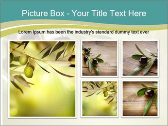 Olives PowerPoint Templates - Slide 19